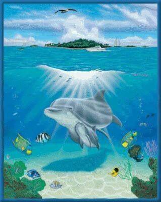 Дельфины красивые картинки и фото (18)