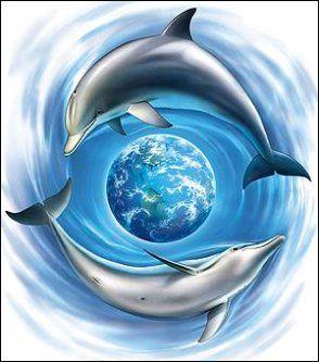 Дельфины красивые картинки и фото (25)
