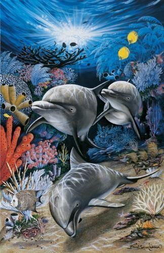Дельфины красивые картинки и фото (27)