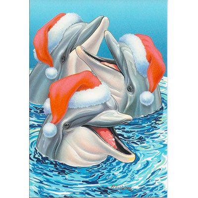 Дельфины красивые картинки и фото (3)