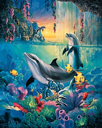 Дельфины красивые картинки и фото (31)