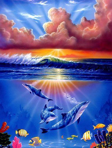 Дельфины красивые картинки и фото (32)