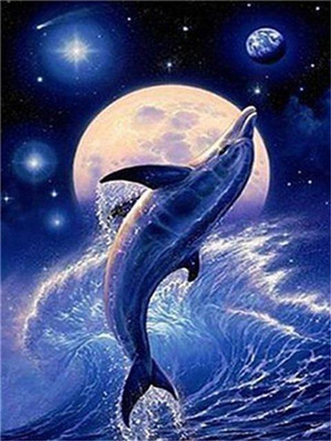 Дельфины красивые картинки и фото (4)