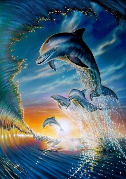Дельфины красивые картинки и фото (7)