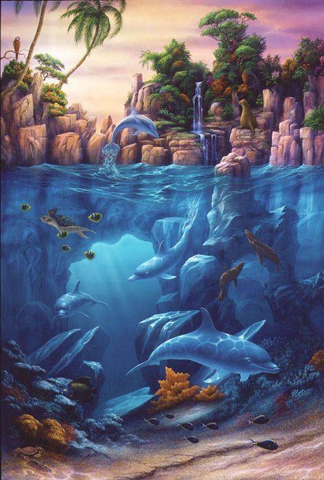 Дельфины красивые картинки и фото (8)