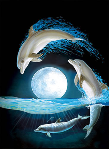 Дельфины красивые картинки и фото (9)