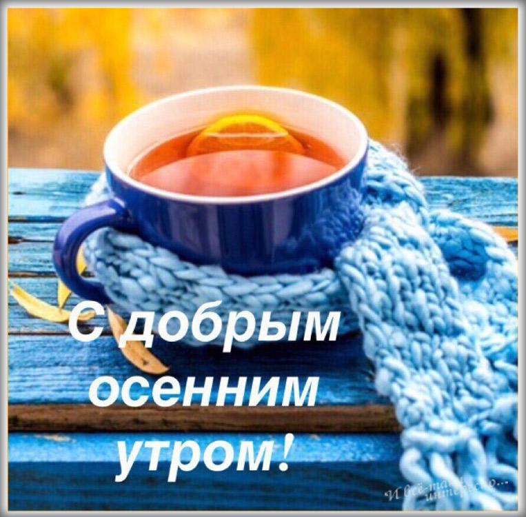 Доброе осеннее утро картинки красивые (7)
