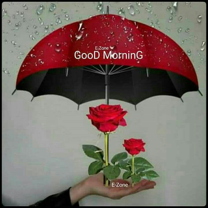 Доброе утро и хорошего дня картинки красивые для девушки (11)
