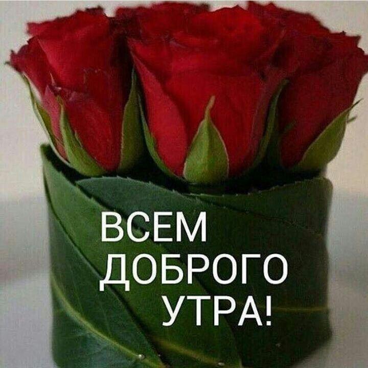 Доброе утро и хорошего дня картинки красивые для девушки (17)