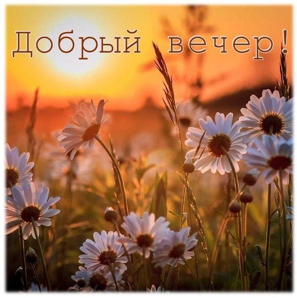 Доброе утро и хорошего дня картинки красивые для девушки (2)