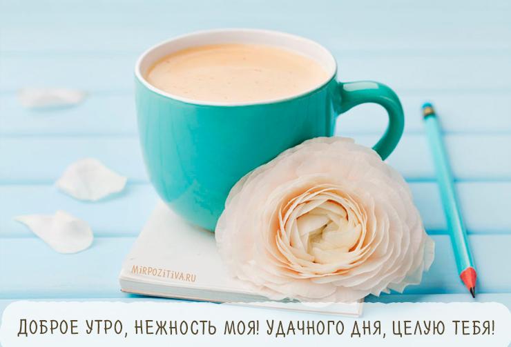 Доброе утро картинки красивые для девушек с кофе (9)