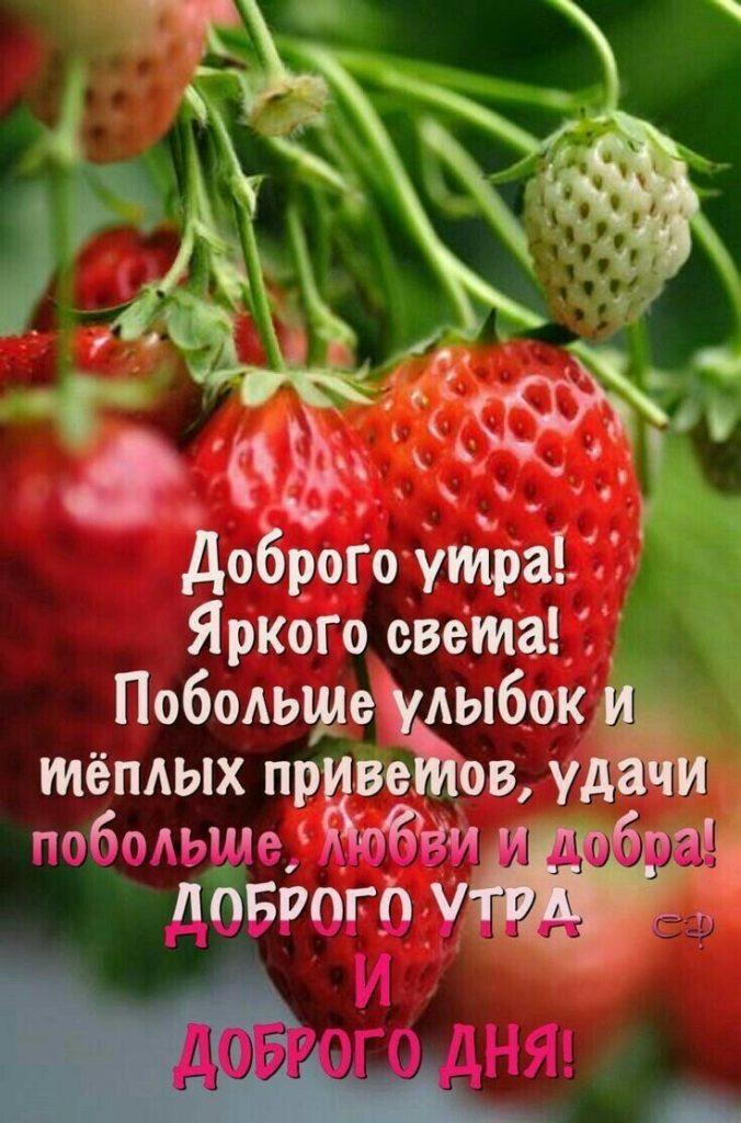 Доброе утро картинки красивые для девушек с цветами (14)
