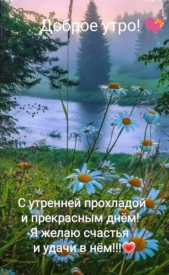 Доброе утро картинки красивые для девушек с цветами (15)