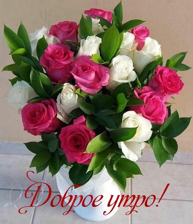 Доброе утро картинки красивые для девушек с цветами (17)