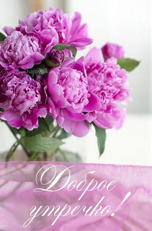 Доброе утро картинки красивые для девушек с цветами (5)