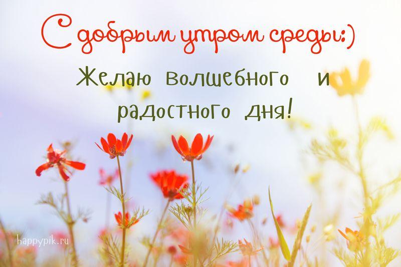 Доброе утро картинки красивые для девушек с цветами (7)