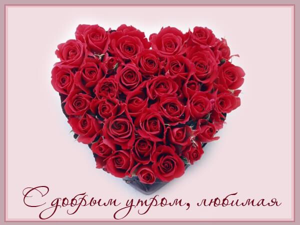 Доброе утро любимая картинки красивые цветы с пожеланиями (4)