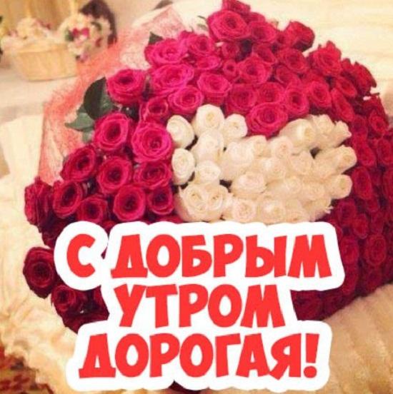 Доброе утро любимая картинки красивые цветы с пожеланиями (9)