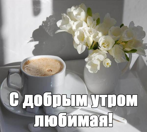 Доброе утро любовь моя в картинках смешные