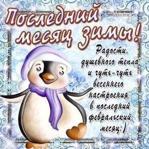 Зима красивые картинки и фотографии (10)