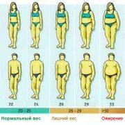 Индекс массы тела – что это такое и с чем его едят (2)