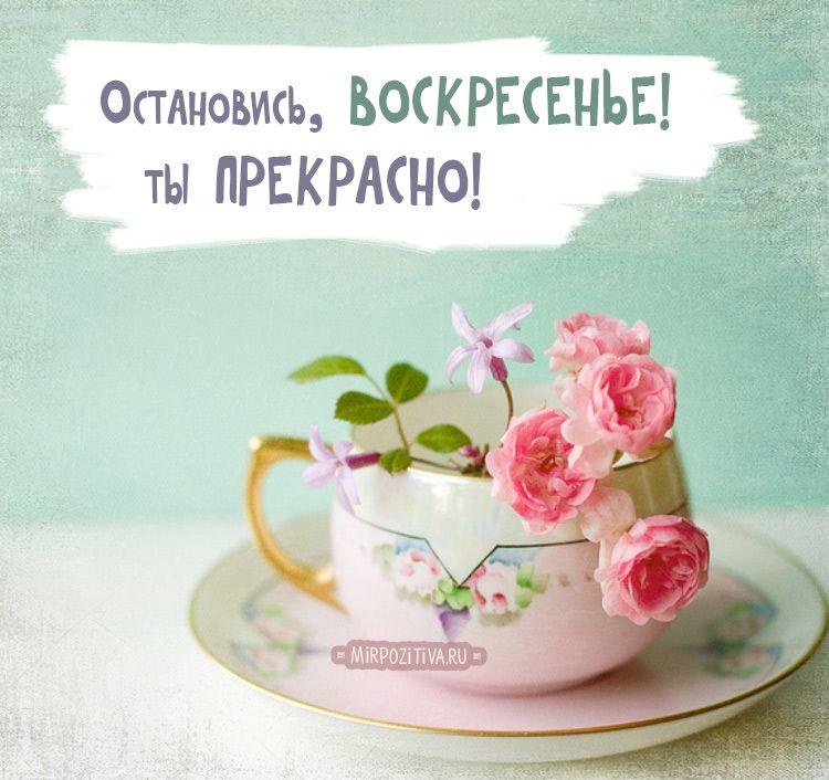 Картинки доброе утро вторник - 25 открыток (9)