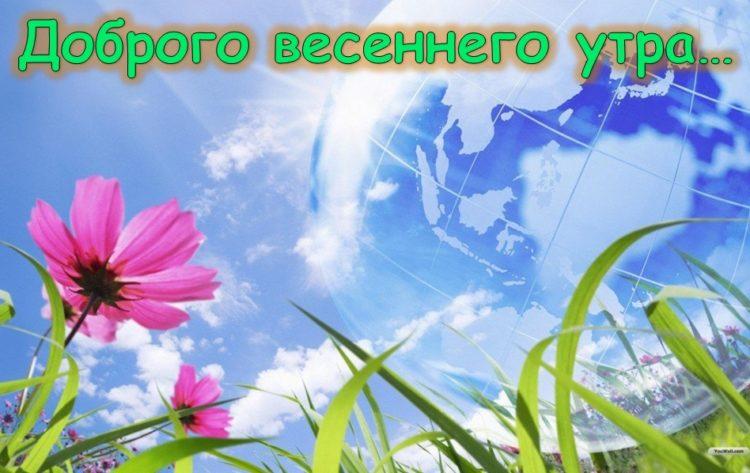 Картинки и открытки доброе весеннее утро - 20 фото (13)