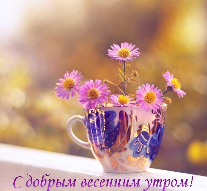 Картинки и открытки доброе весеннее утро - 20 фото (20)
