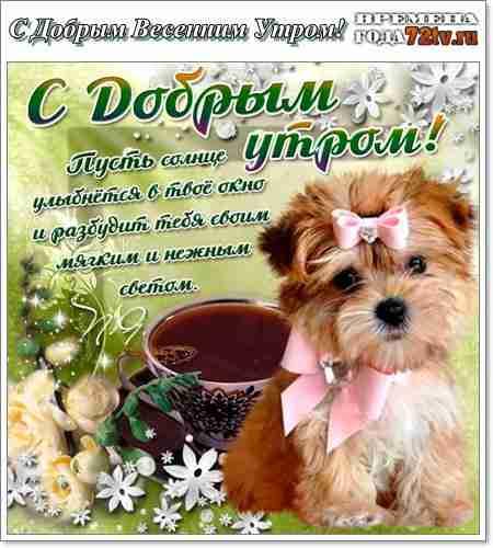 Картинки и открытки доброе весеннее утро - 20 фото (23)