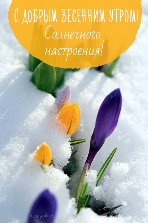 Картинки и открытки доброе весеннее утро - 20 фото (9)
