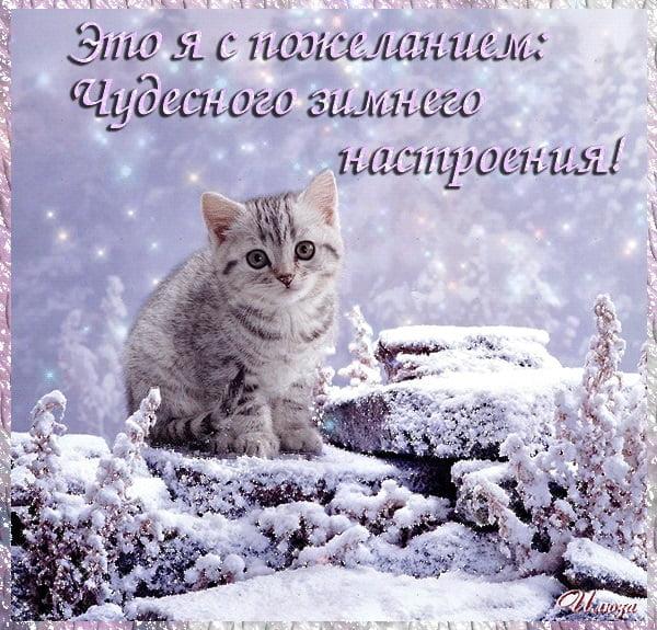 Картинки и открытки доброе зимнее утро - 20 фото (5)