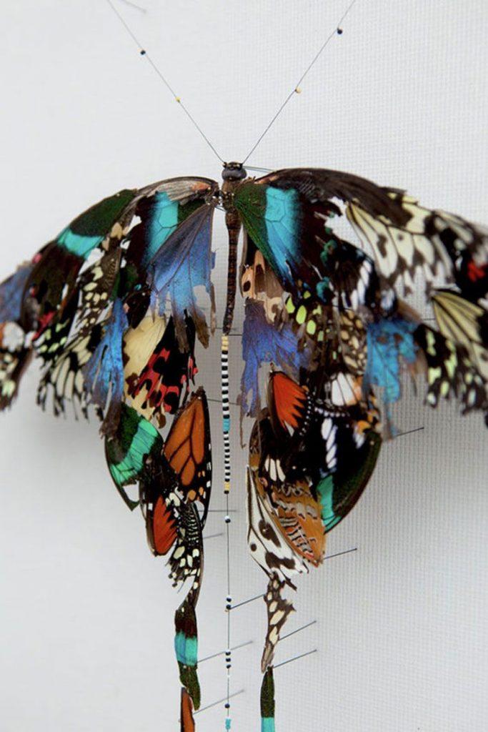 Картинки красивые бабочки нарисованные - подборка изображений (1)