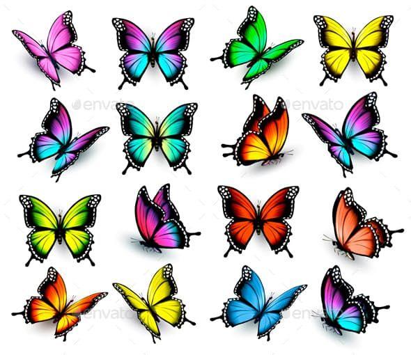 Картинки красивые бабочки нарисованные - подборка изображений (10)