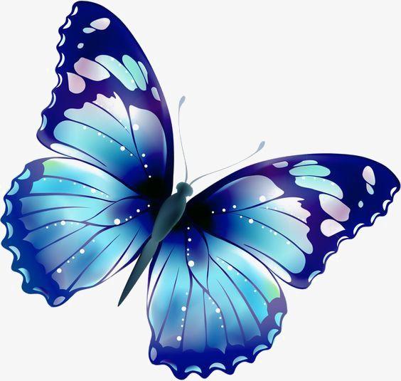 Картинки красивые бабочки нарисованные - подборка изображений (13)