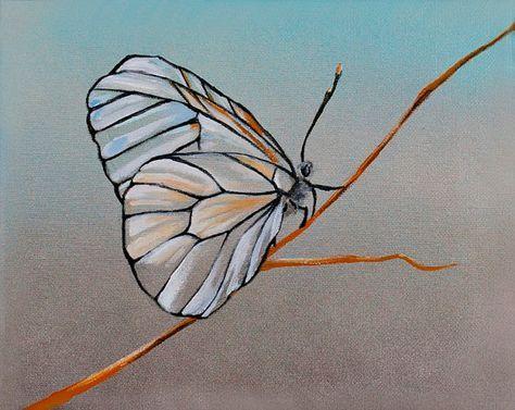 Картинки красивые бабочки нарисованные - подборка изображений (14)