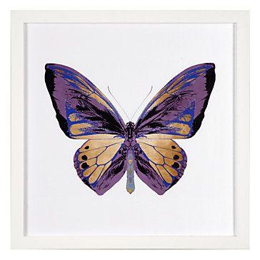Картинки красивые бабочки нарисованные - подборка изображений (23)