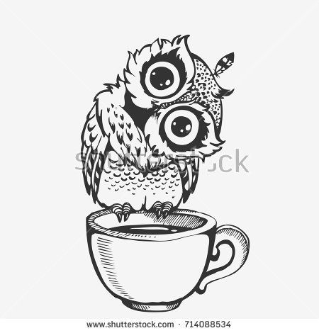 Картинки нарисованные карандашом птицы (13)