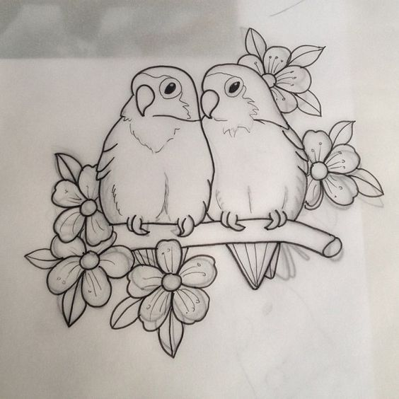 Картинки нарисованные карандашом птицы (8)