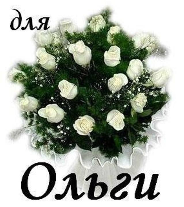 Картинки прикольные поздравления для Ольги с днем рождения (3)