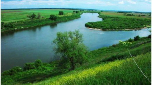Картинки природа Донского края (3)