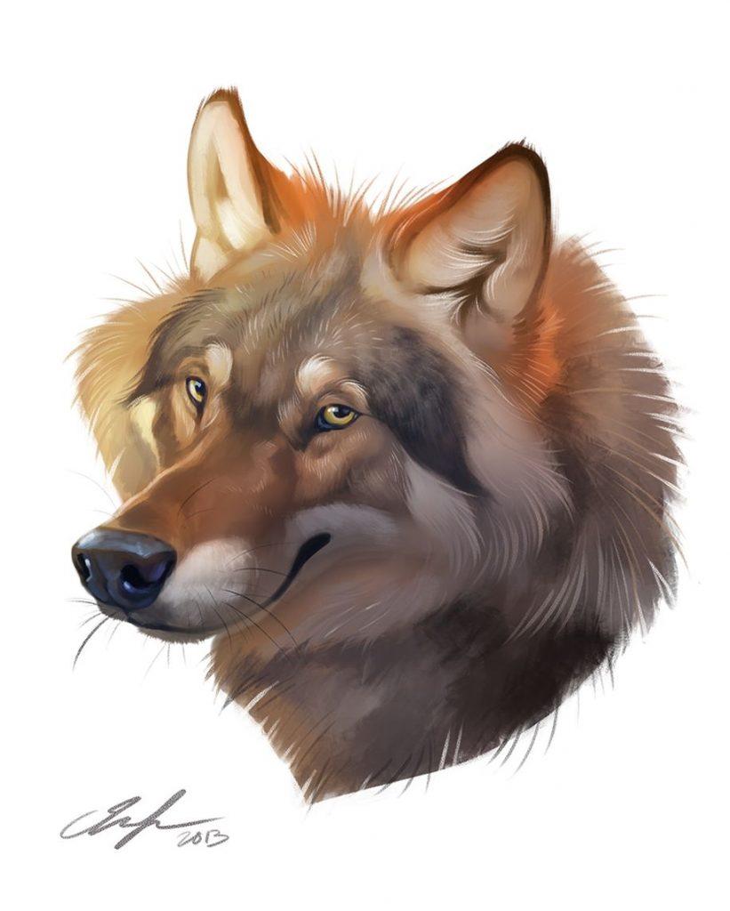 Картинки про собак карандашом - подборка (1)