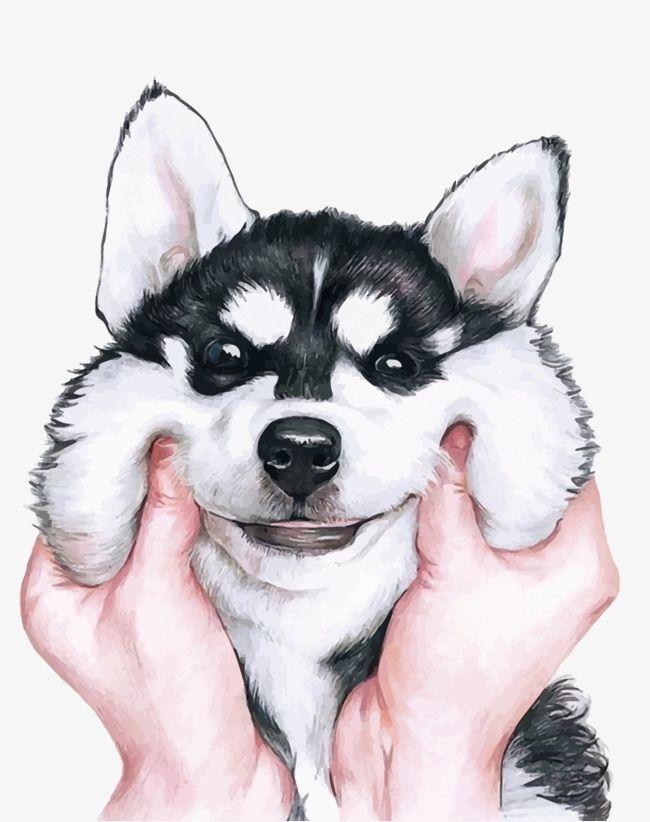 Картинки про собак карандашом - подборка (10)