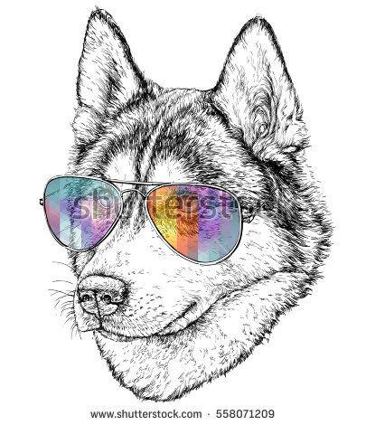 Картинки про собак карандашом - подборка (16)