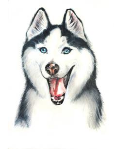 Картинки про собак карандашом - подборка (2)