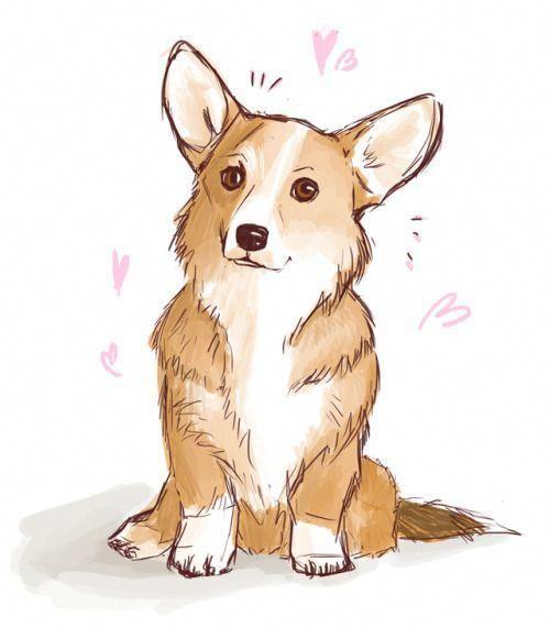 Картинки про собак карандашом - подборка (23)