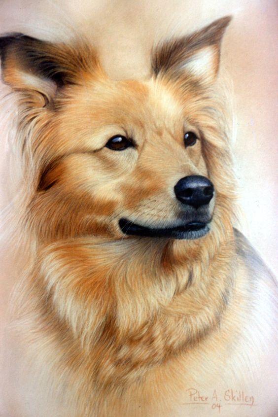 Картинки про собак карандашом - подборка (3)