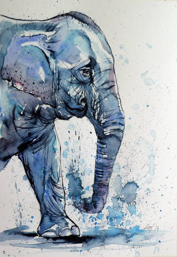 Картинки слон рисунок и картинки (11)