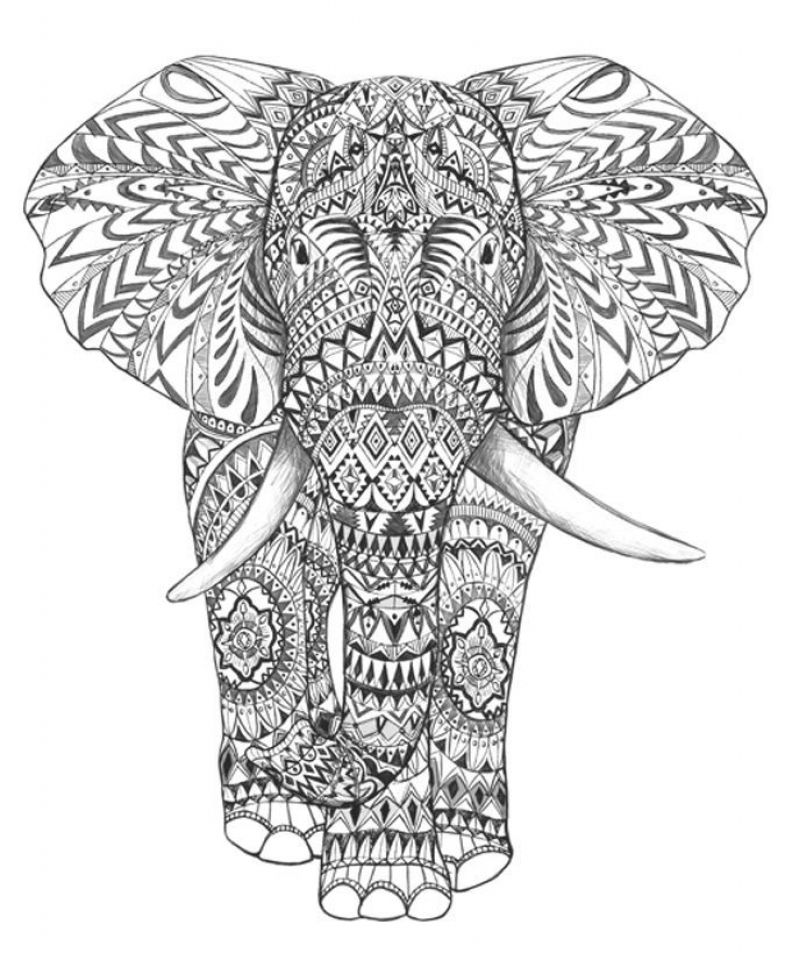 Картинки слон рисунок и картинки (13)