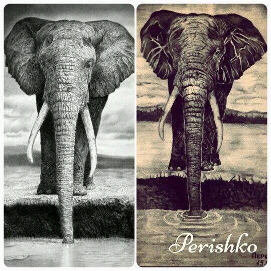 Картинки слон рисунок и картинки (21)