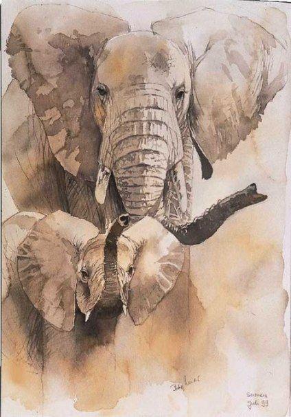 Картинки слон рисунок и картинки (25)